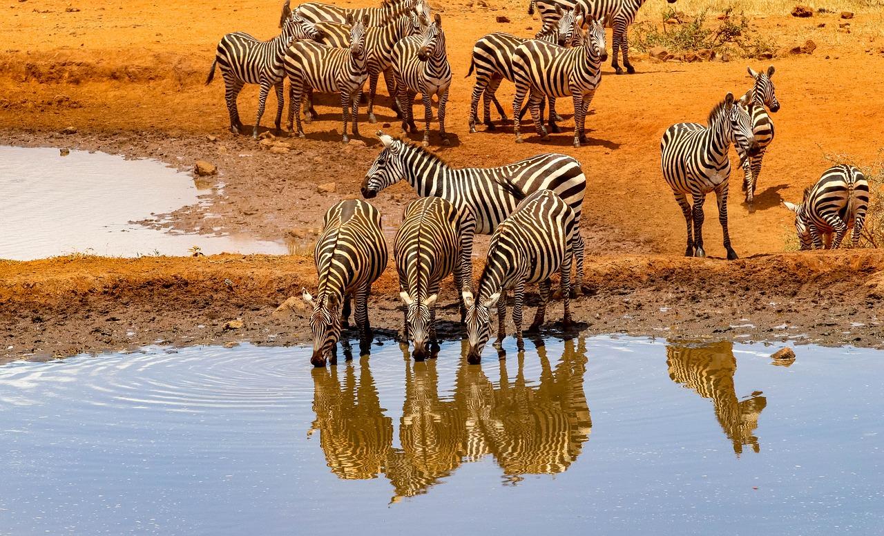 ubezpieczenie-turystyczne-do-kenii