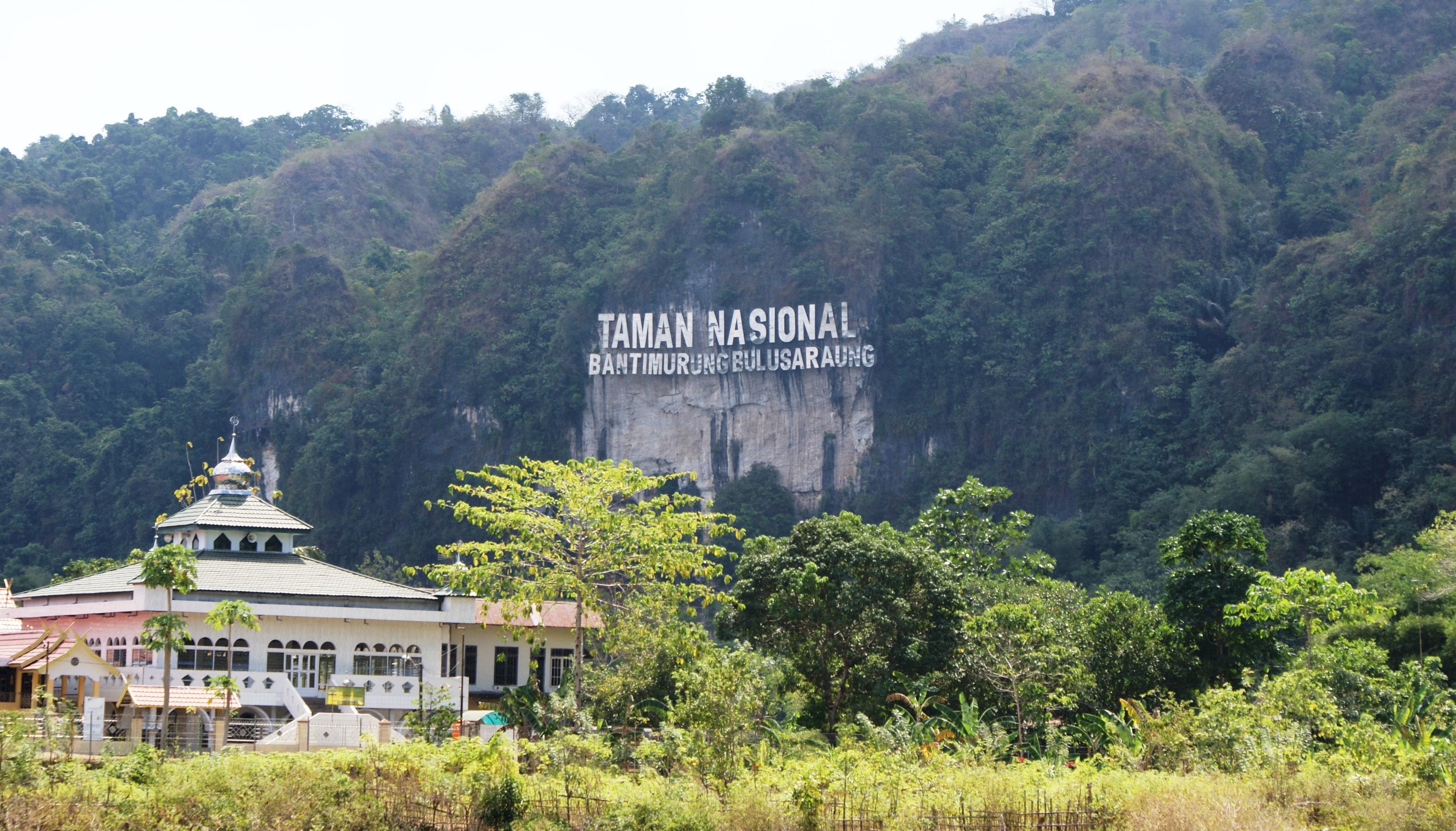 Jaskinia Leang Petta Kere w Indonezji.