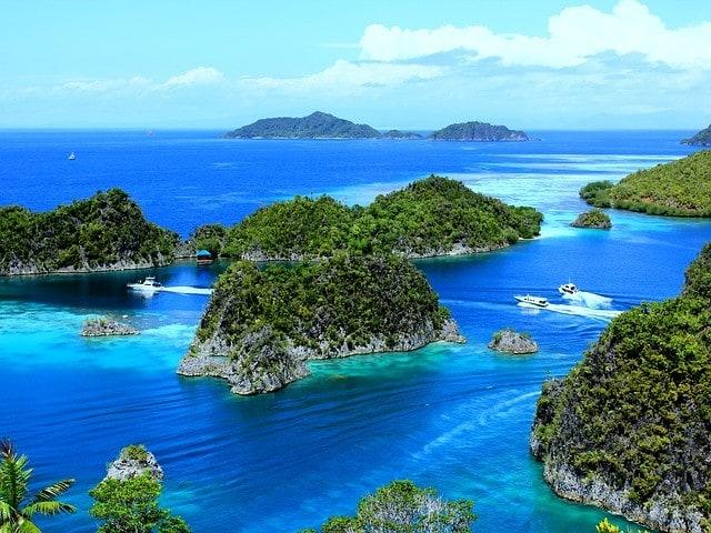 Papua Zachodnia w Indonezji