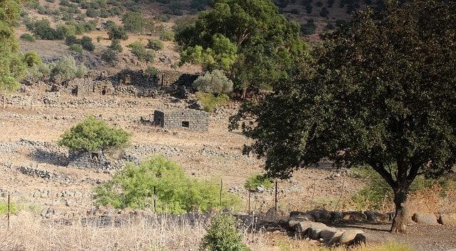 Wzgórza Golan w Izraelu.