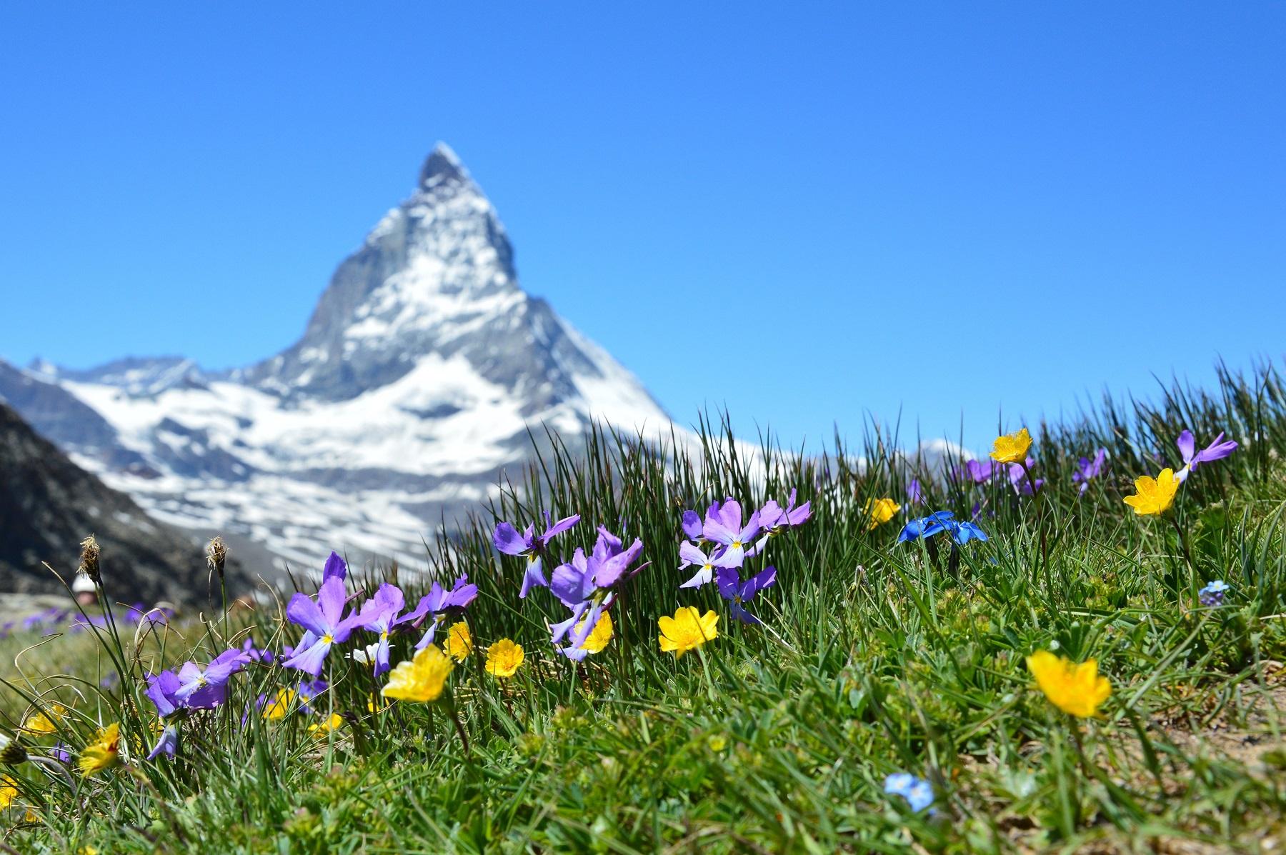 ubezpieczenie-turystyczne-do-Szwajcarii